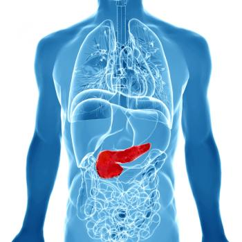 illustration of pancreas