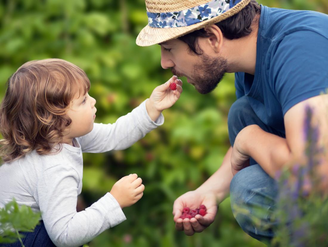 a child feeding a raspberry to his or her dad.