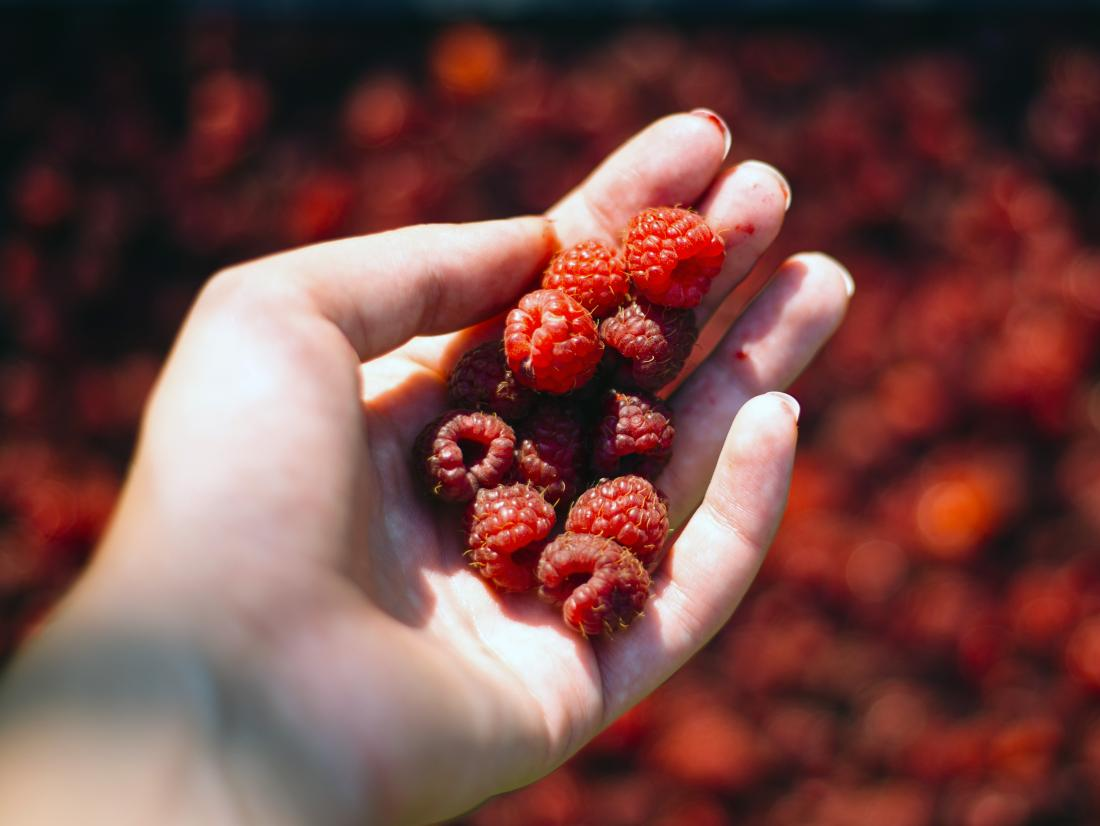 a woman holding a bunch of raspberries which have lots of benefits when eaten.