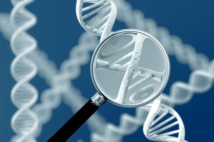 magnifying glass on dna