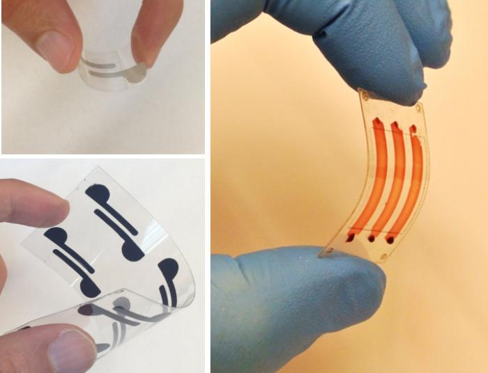 cellulose paper and flexible polyester films being used as diagnostic tools to detect bioagents