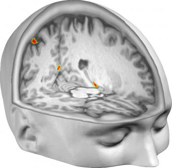 Illustration of brain areas from which perceived self-location could be decoded