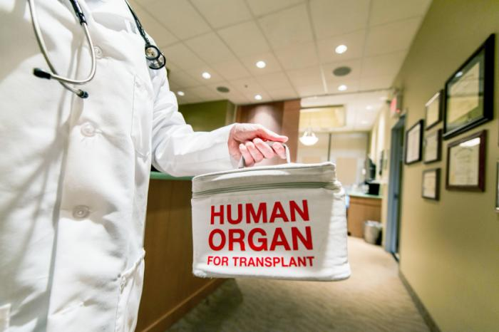 doctor holding container with human organ