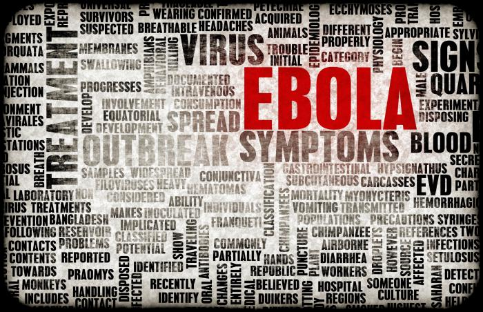 Collage of words about Ebola