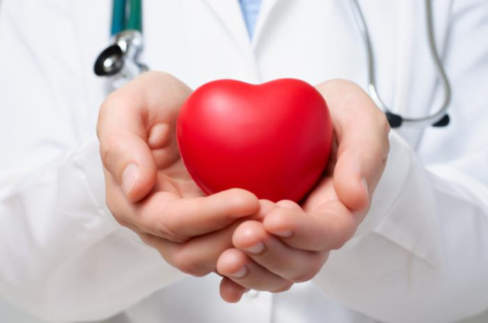 [A doctor holding a heart]