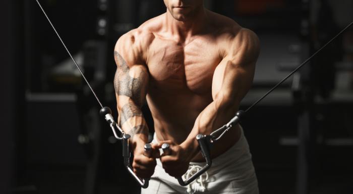 [bodybuilder]