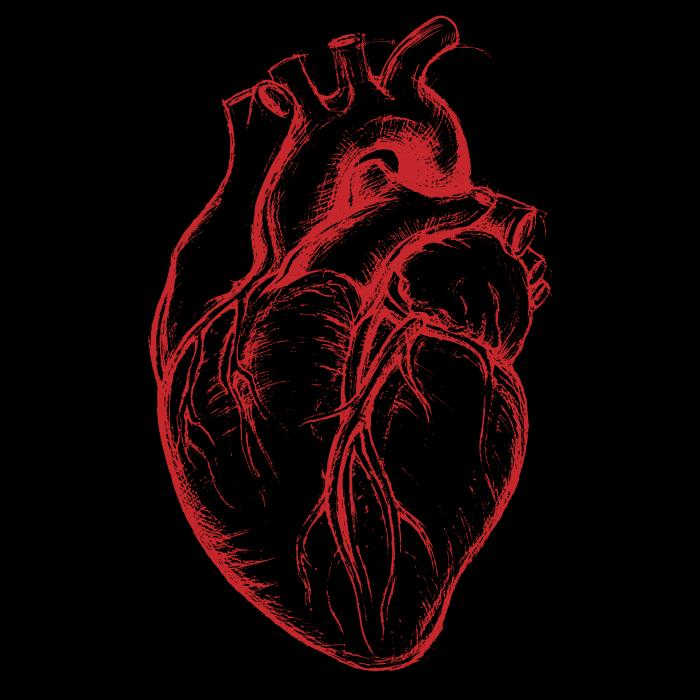 [Illustration of a heart in black and red]