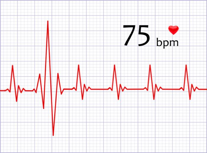 [Heart rate]