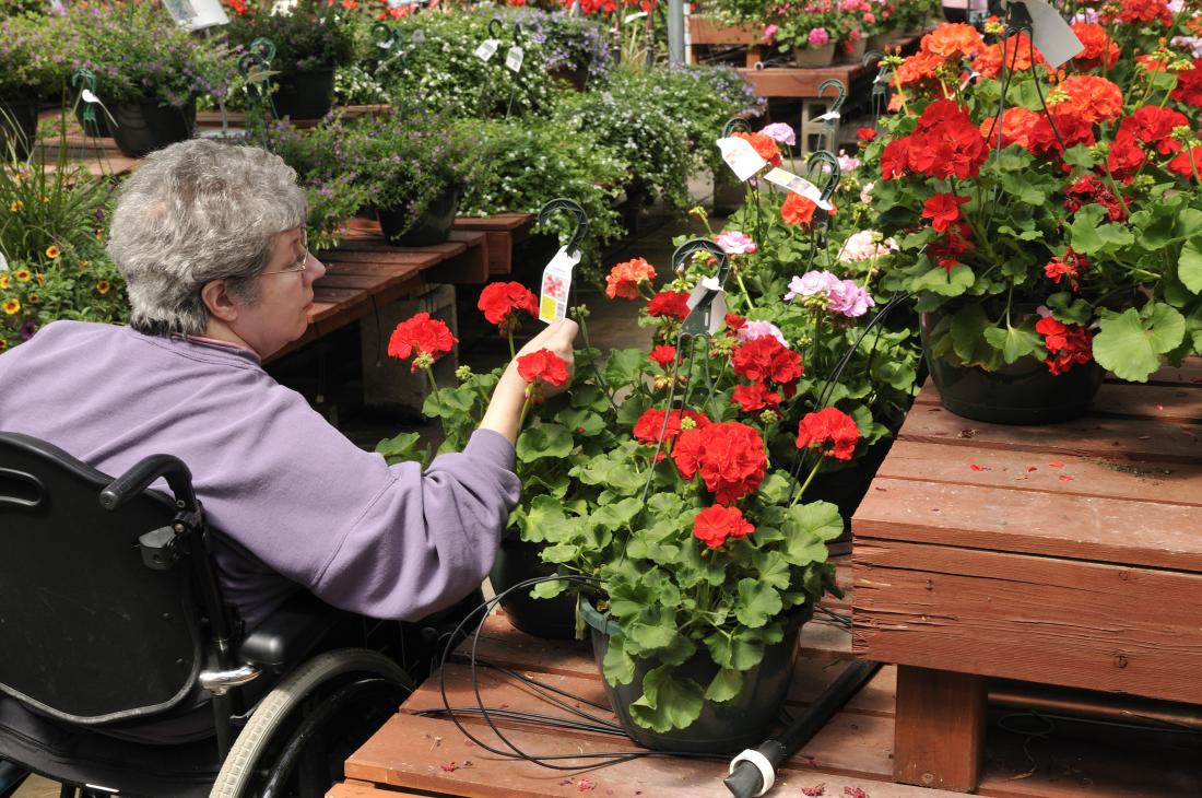Person in wheelchair looks at flowers