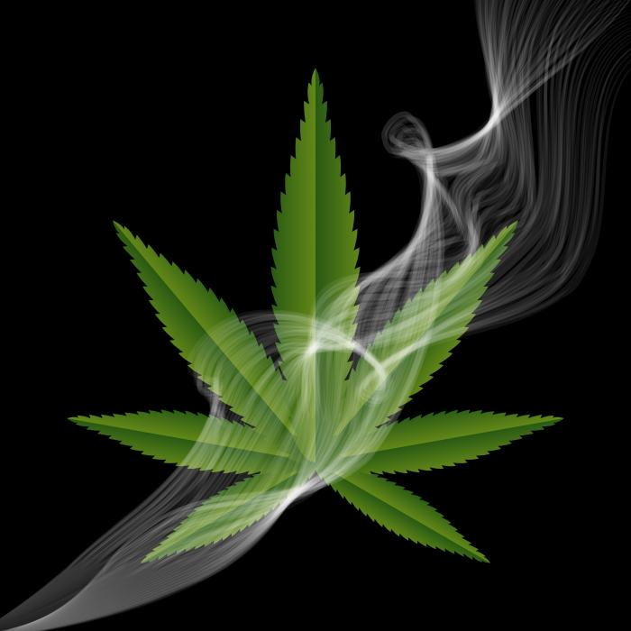 [A marijuana leaf and smoke]