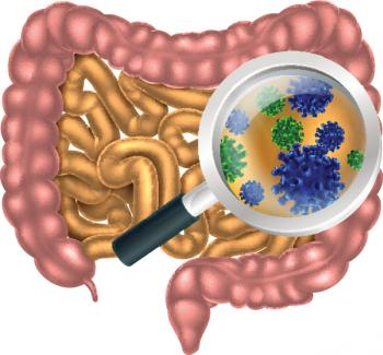 [Illustration of gut bacteria in the intestine]