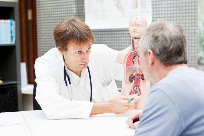 doctor showing patient location of prostate on anatomical model