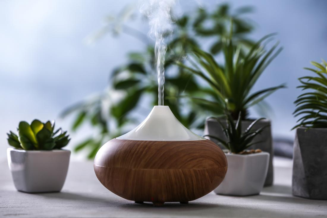 essential oil diffuser for aromatherapy surrounded by succulent flowers and cactus in plant pots