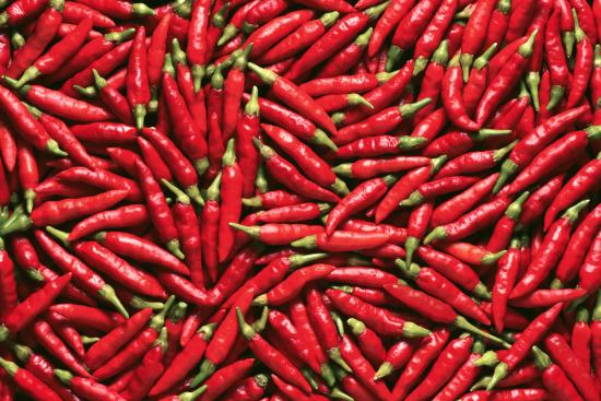[Red chili peppers]