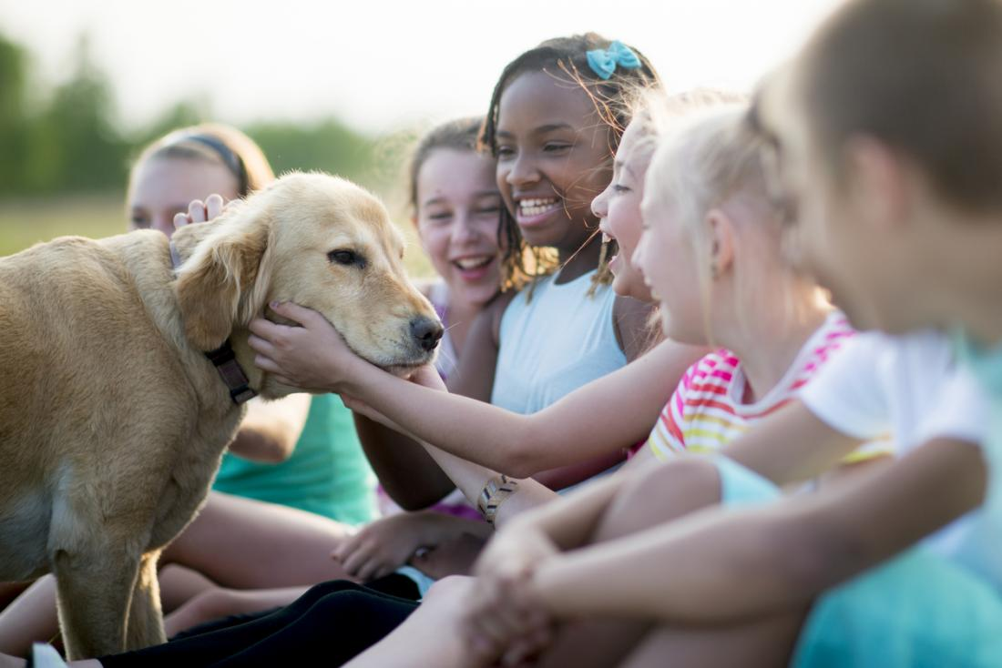 a dog being petted by a group of children