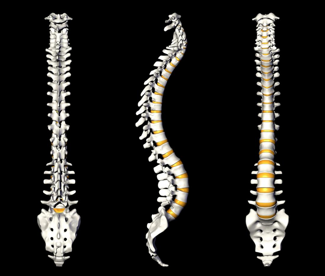 three views of the spine including the coccyx