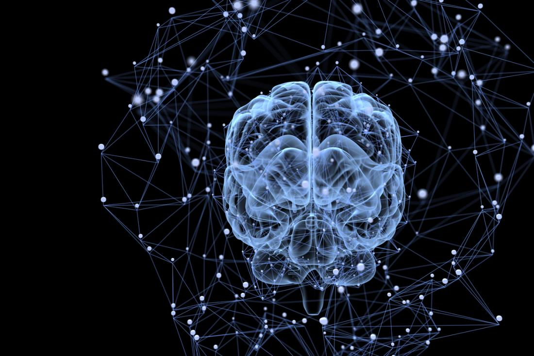 brain activity and connections
