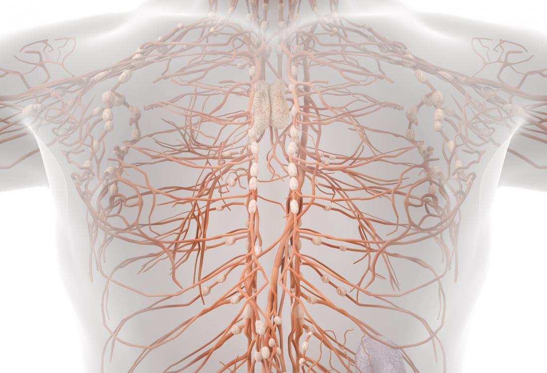 The lymphatic system helps to eliminate toxic or waste materials from the body. Lymphangomia is caused by a disorder with the lymphatic system.