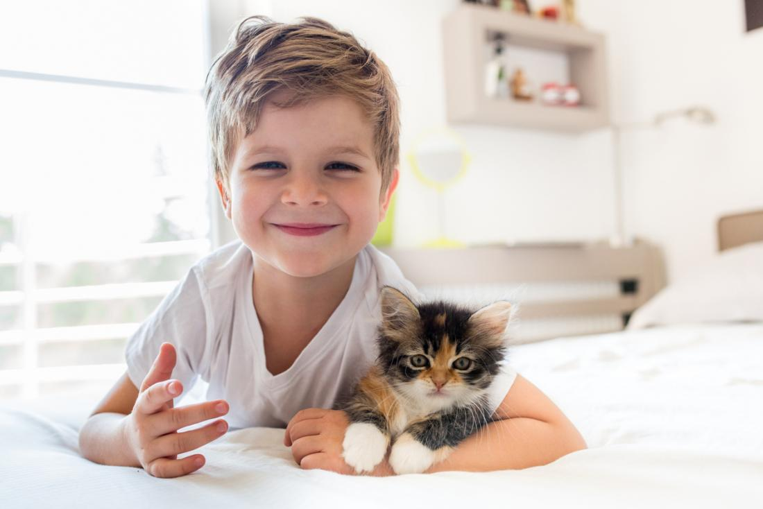 little boy with his kitten