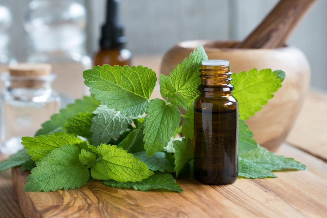 lemon balm essential oil in glass bottle with fresh leaves