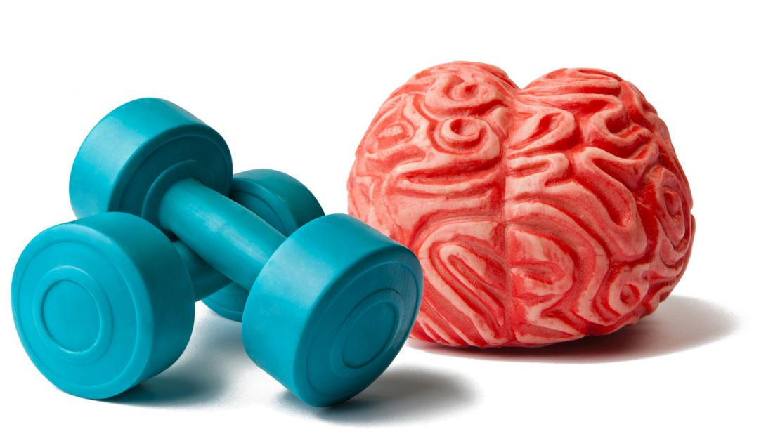 brain and weights