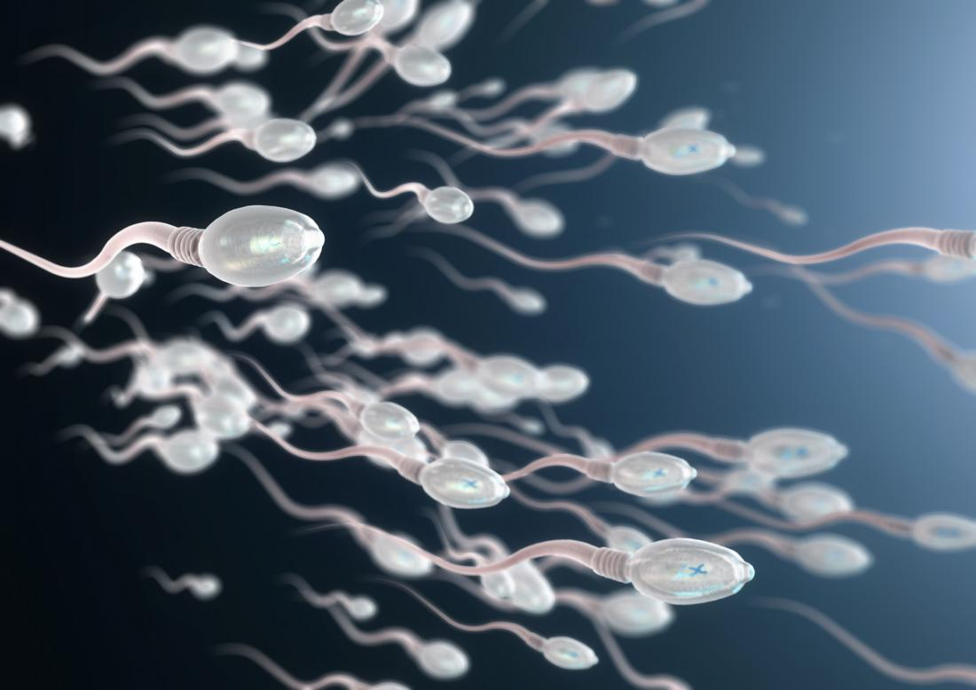 3D image of sperm cells.