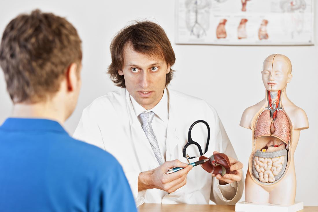 Doctor explaining liver disease to patient using anatomical model.