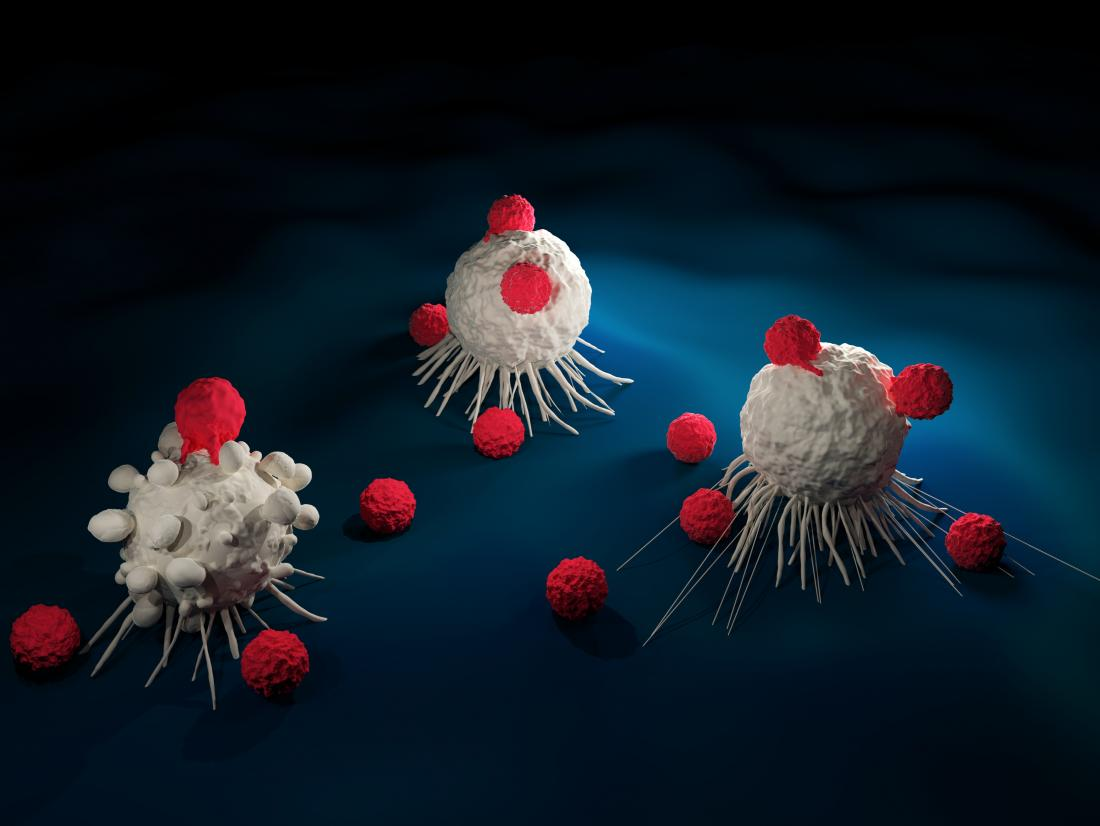t cells attacking cancer cells