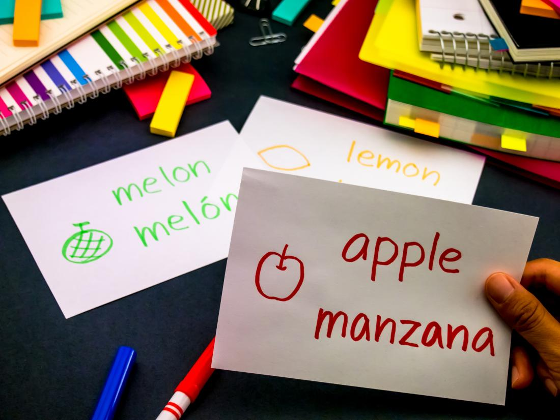 Bilingual flash cards