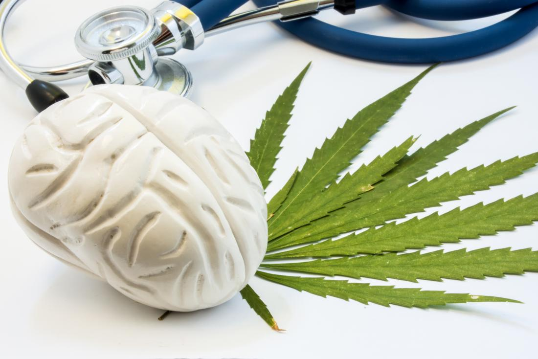 brain and cannabis plant