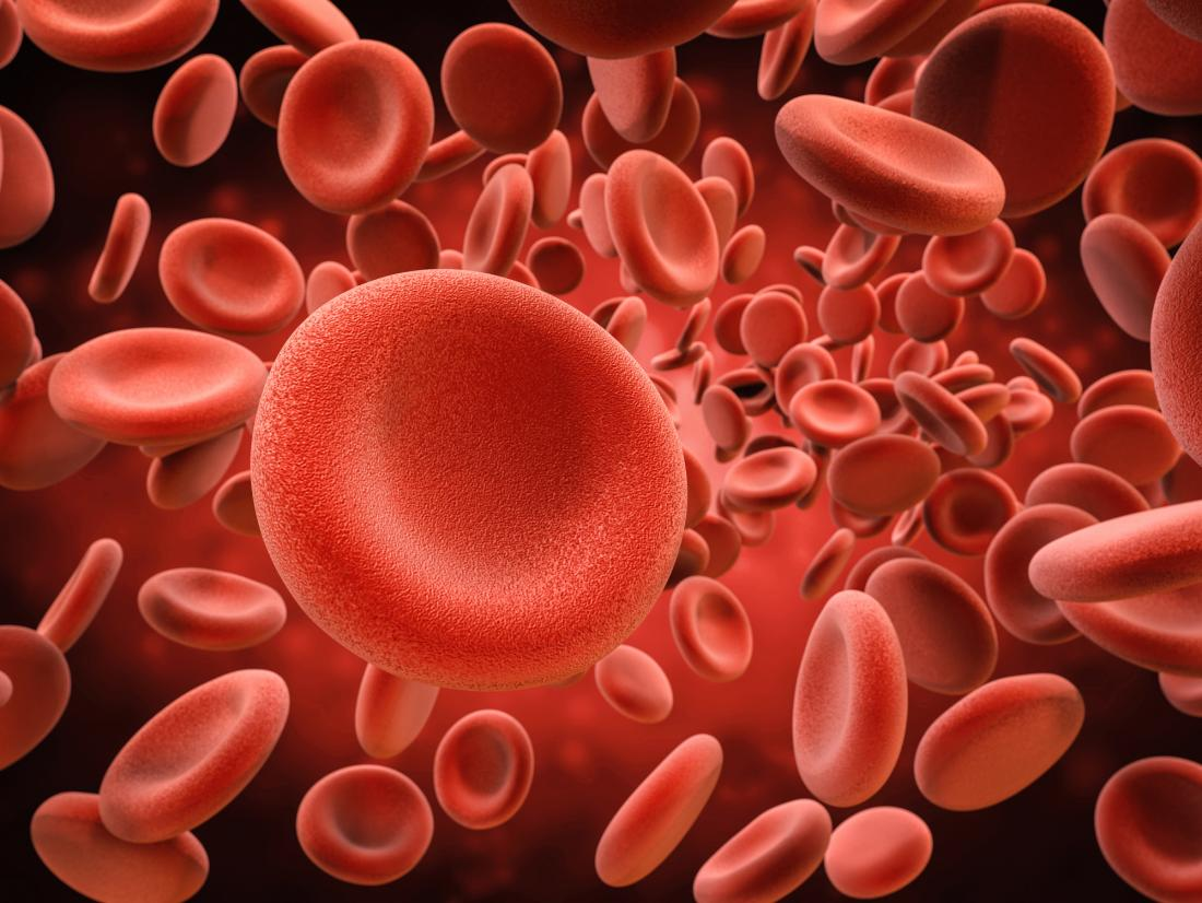 Anemia treatments may arise from red blood cell discovery