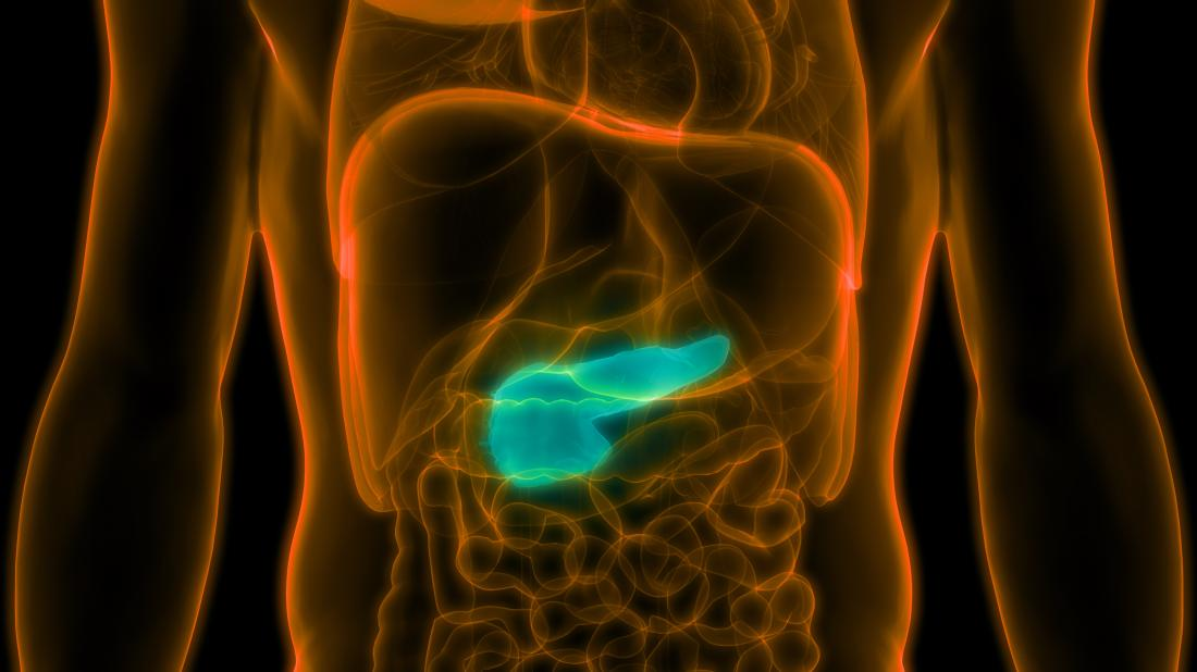 pancreas x-ray