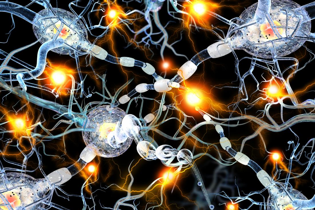 concept of nerve cells