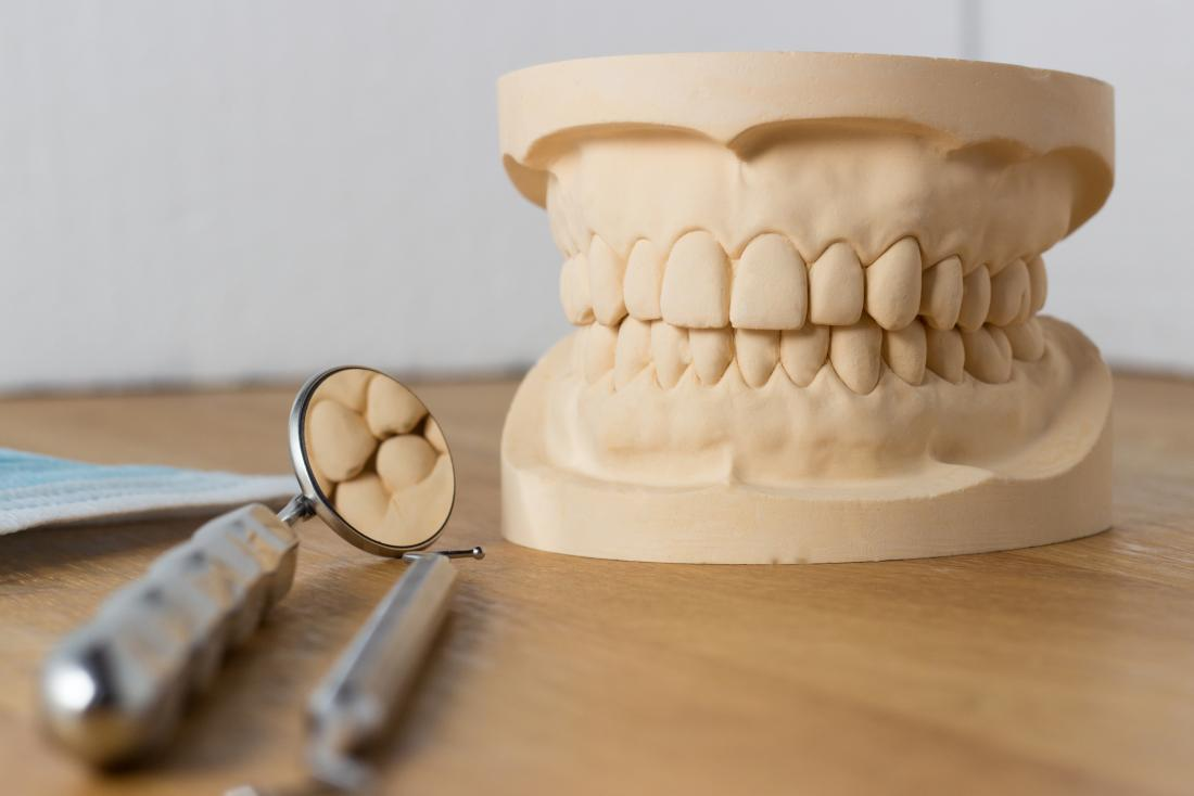 Dentist's teeth model with tools besides it.