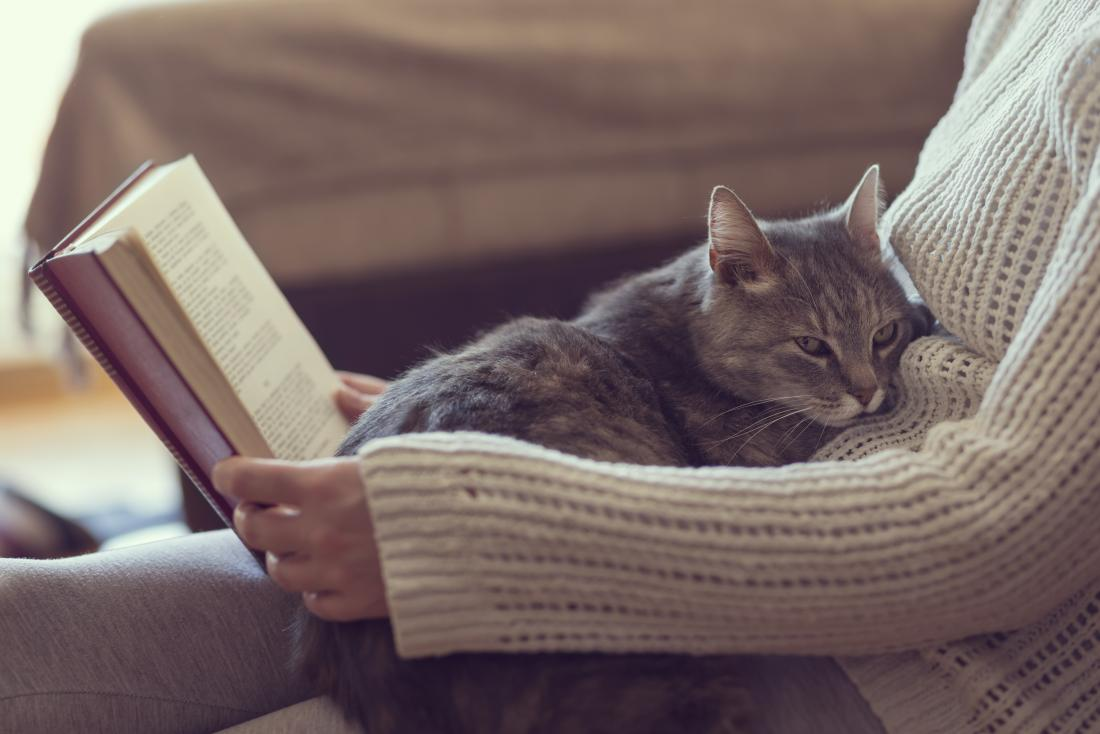 Cat on womans lap whilst she reads. Possible cat allergies