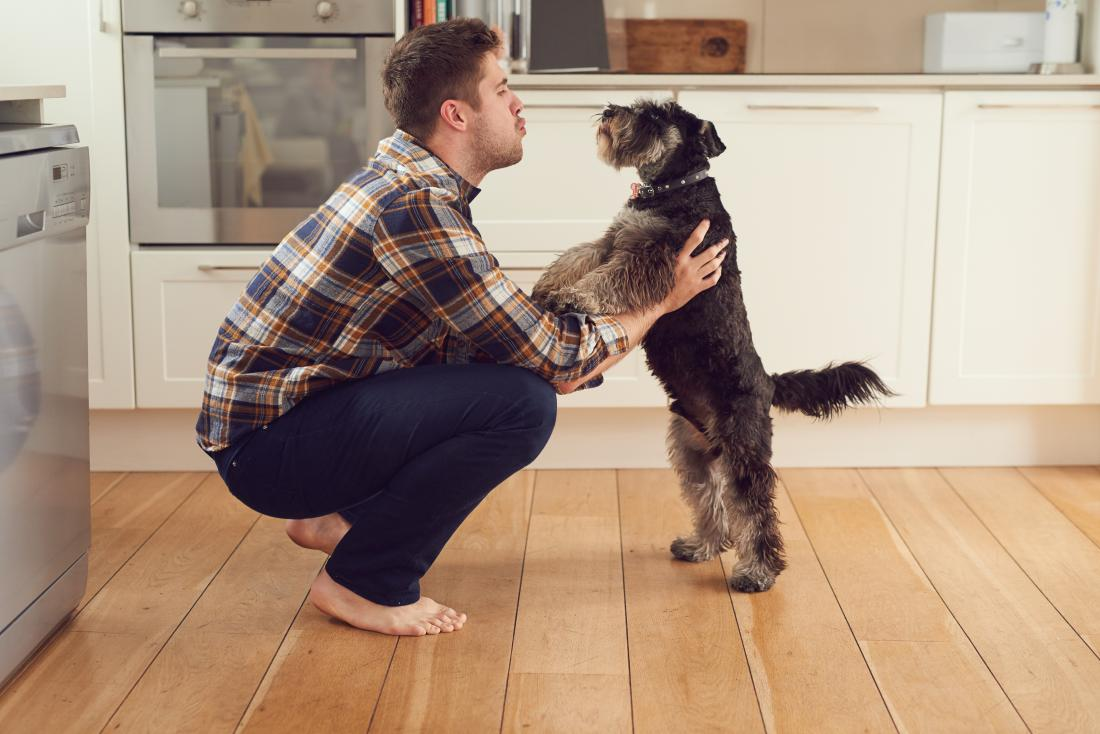 man talking to his dog
