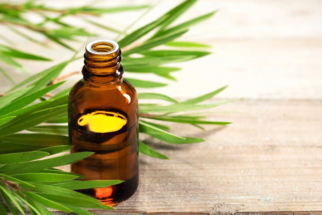 Tea tree essential oil for treating scabies in glass jar with leaves in background.