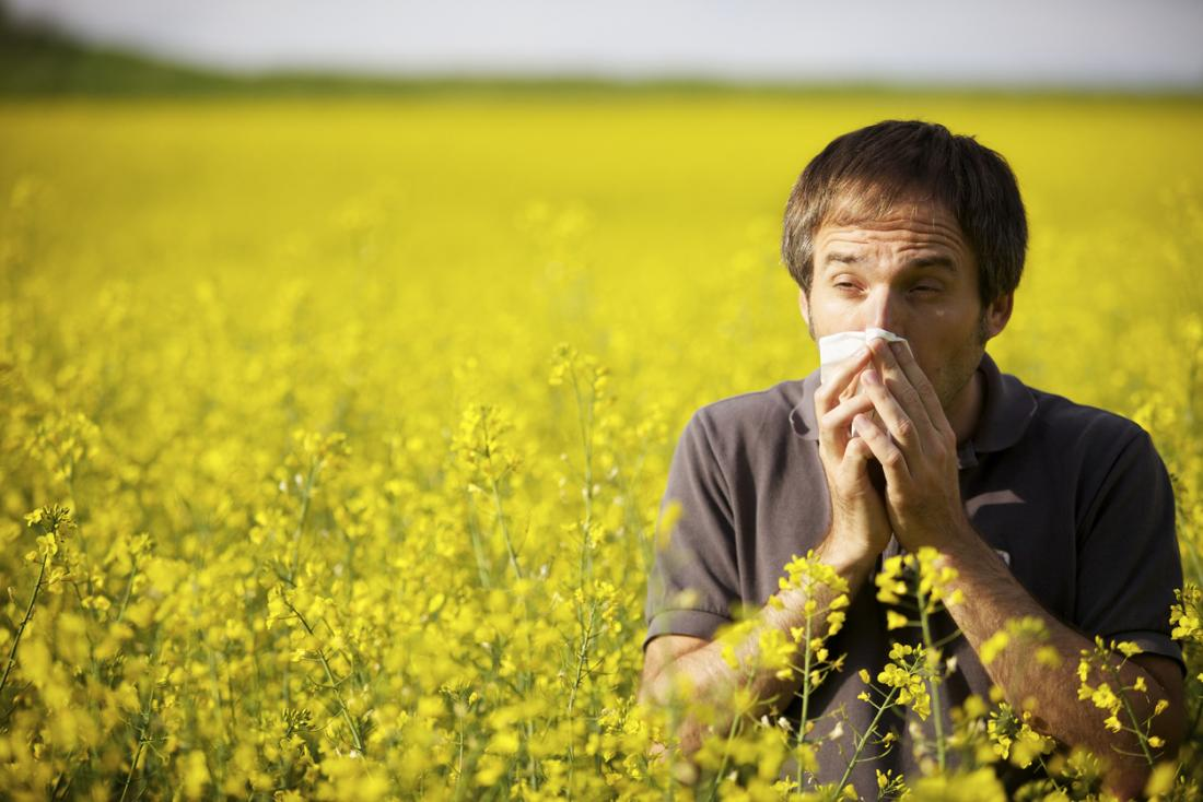 man in field of yellow flowers coughing and blowing his nose