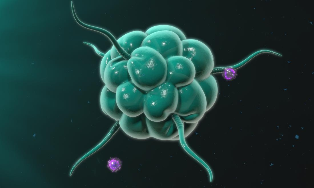 green macrophage