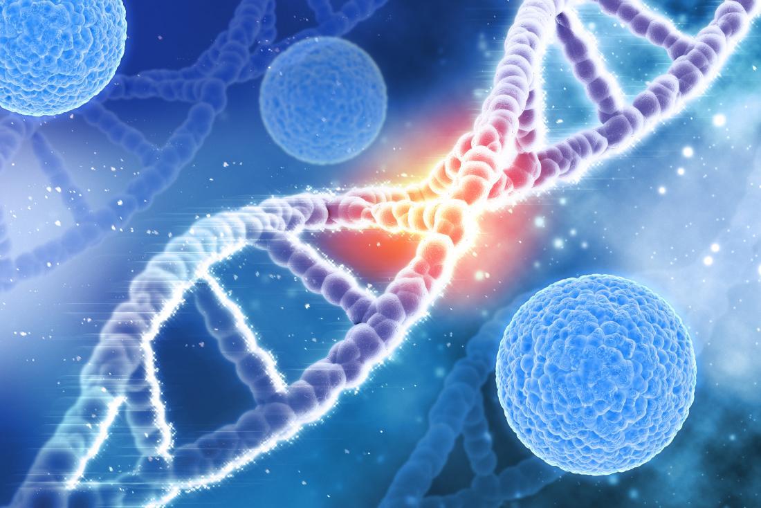 Breakthrough: Researchers fix Alzheimer's gene