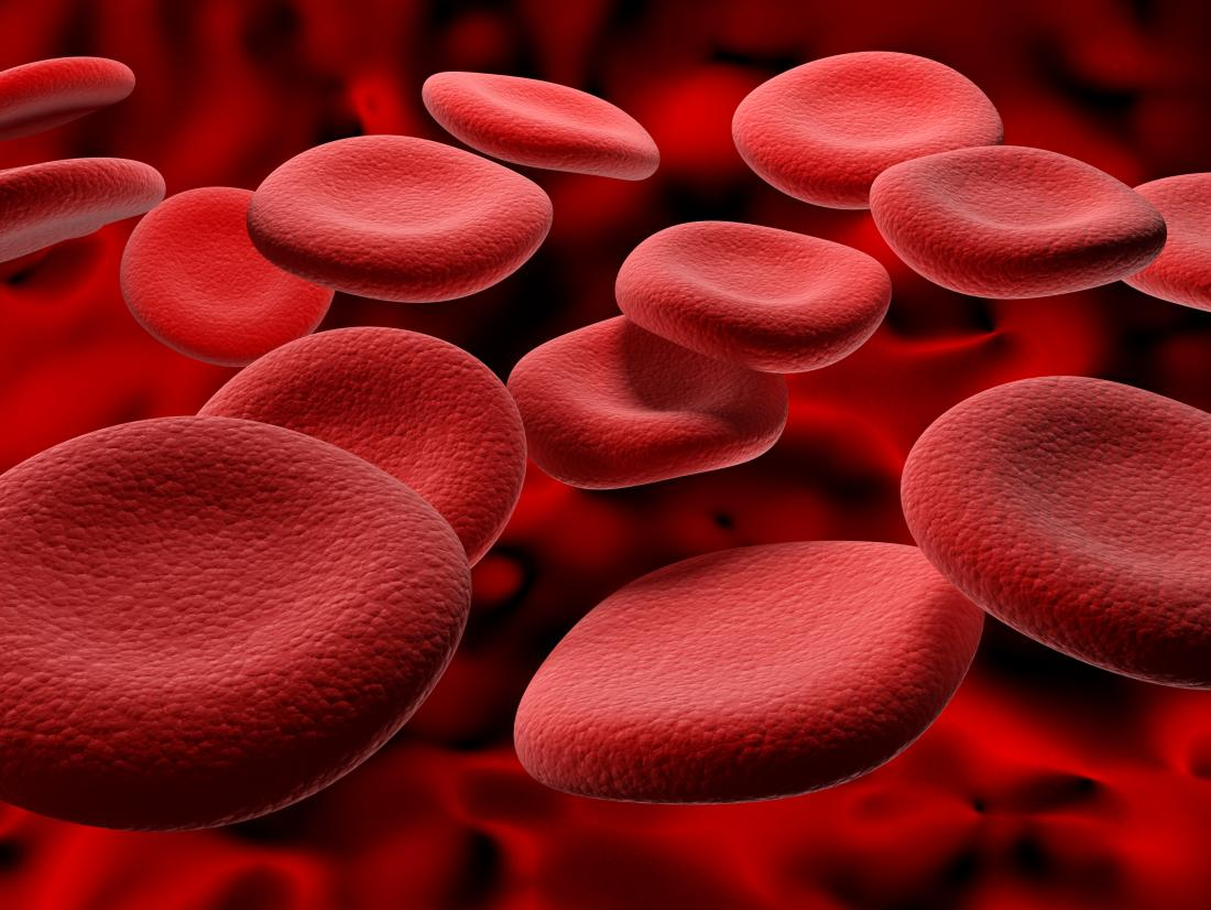 Red blood cells representing ways to increase hemoglobin levels.