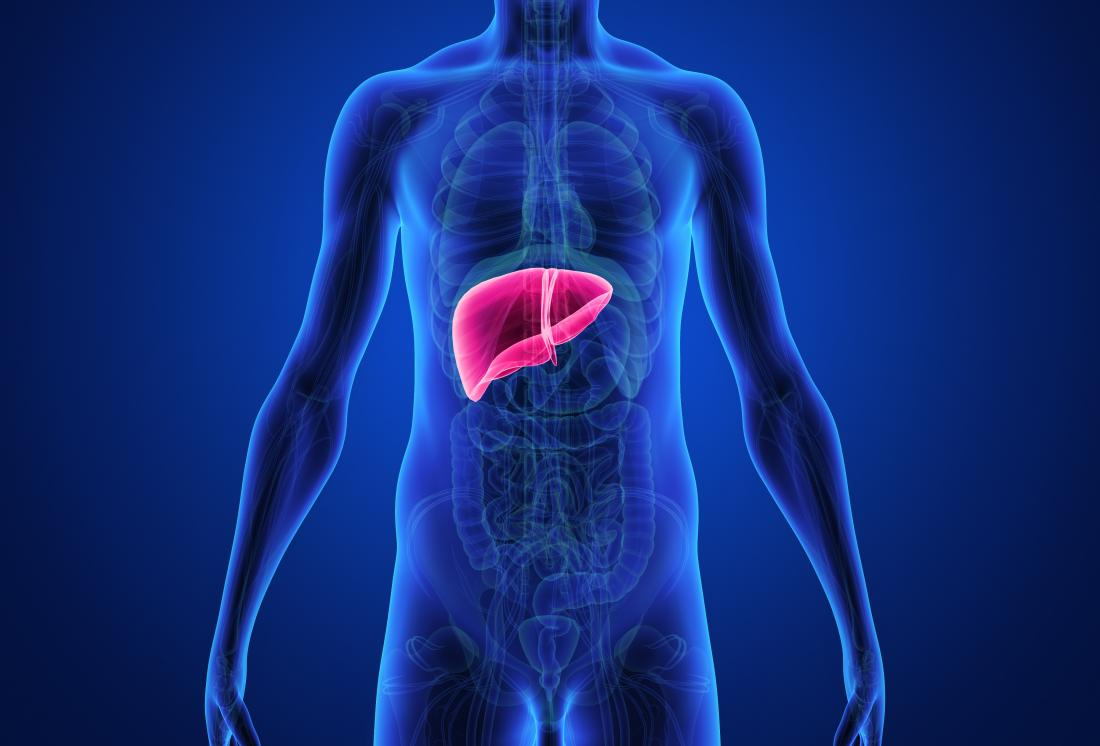 Does diet pills affect your liver