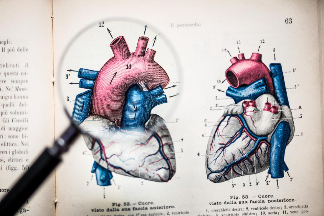magnifying glass zooming in on heart illustration