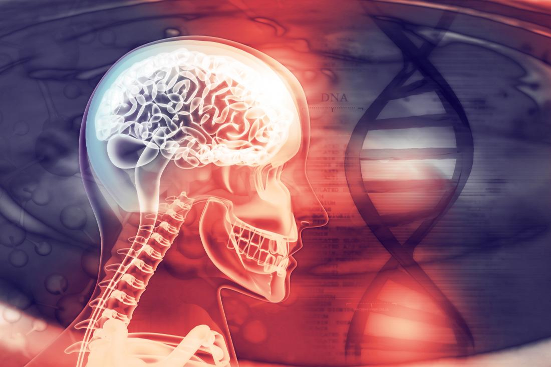Brain scan DNA