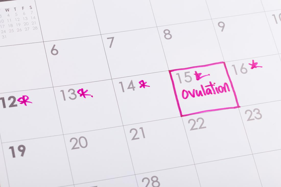 Calendar marked with ovulation.