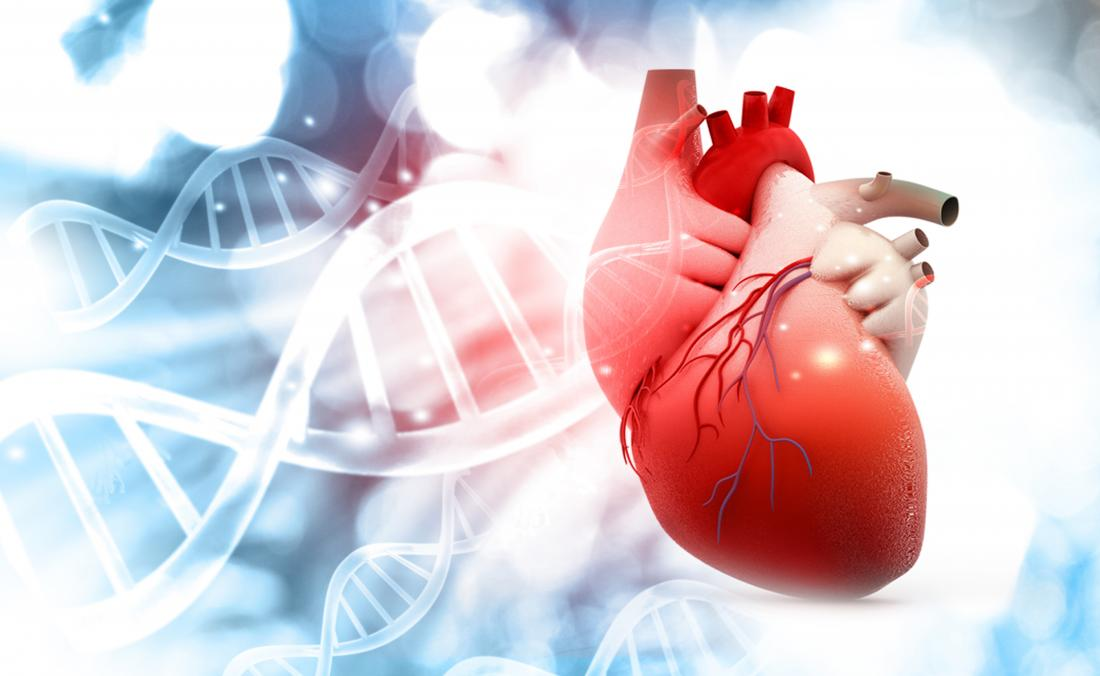 Newly discovered molecule could treat heart failure