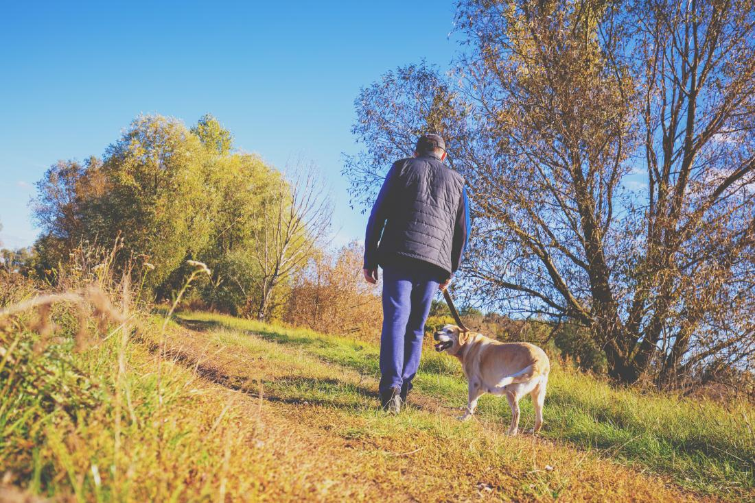 Man walking his dog to try and lose belly fat