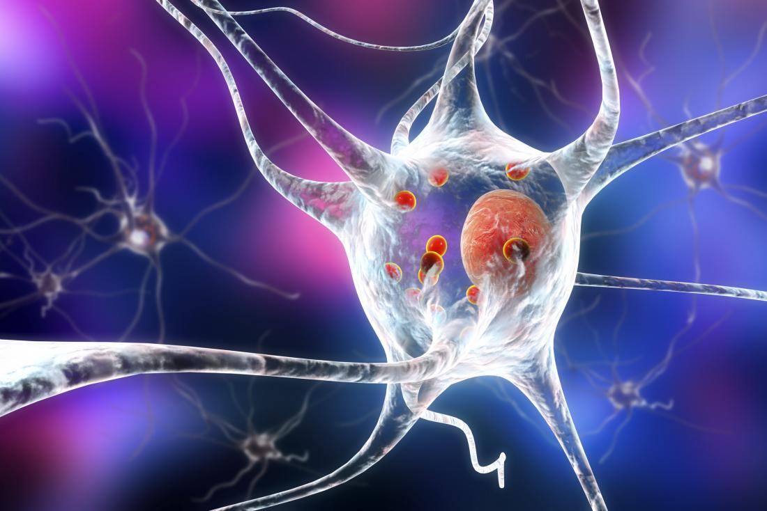 neurons in parkinson's disease