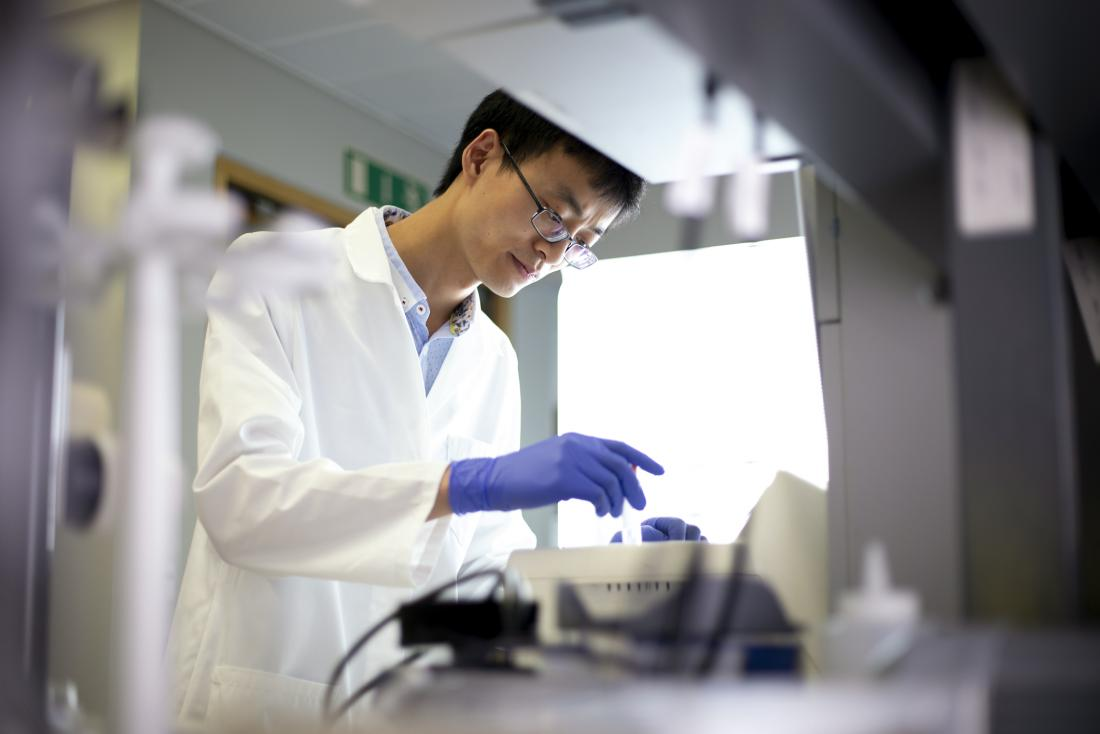 researcher at work in the lab