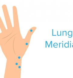 lung meridian pressure point [ 1100 x 818 Pixel ]